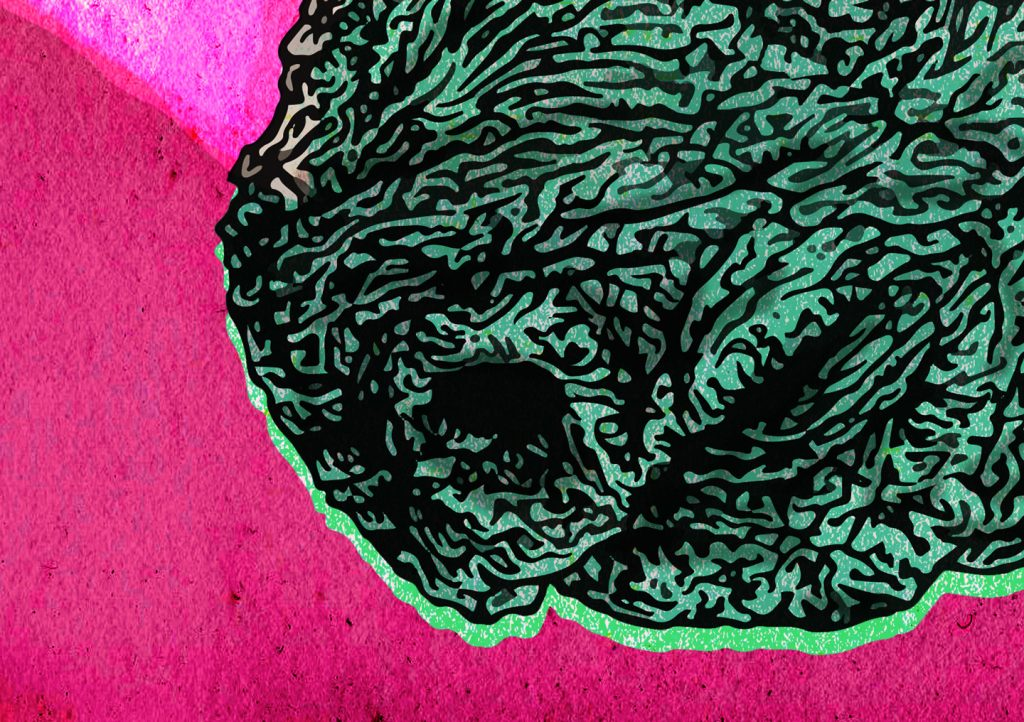 """Hand-drawn colourful illustration of a rhinoceros for Irish musician Lasertom's music EP release 'Super Saor"""" 2018 using pen and pencil by Berlin-based artist and illustrator John Rooney"""